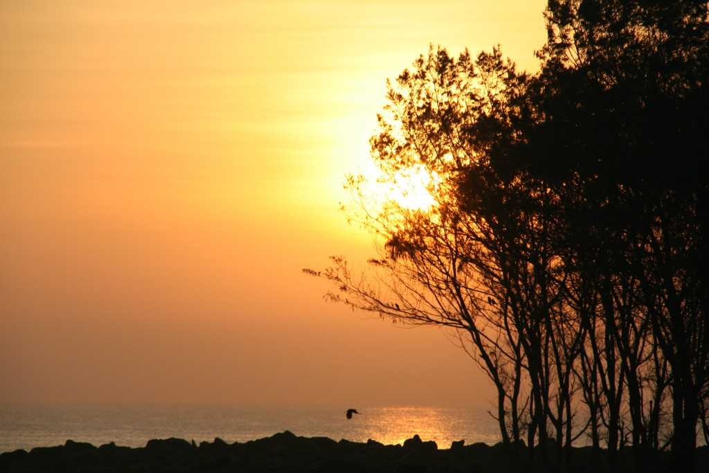 Sunrise at Mahabalipuram