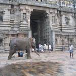Chidanbharam_entrance_gopuram_b
