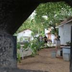 Cholamandal artists' village, garden
