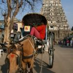 Kanchipuram, Varadaraja Temple, Gopura