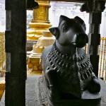 Chennai, Kapaleeshwarar Temple, Nandi