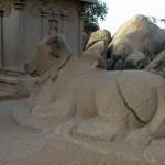 Mahabalipuram, Five Ratha Nandi