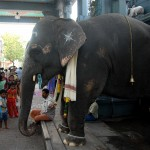 Pondichery, Manakula Vinayagar Temple