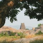 Photos JC Inde  janvier 2007 Gingee Vedantangal Mahabalipuram 142
