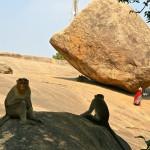 Mahabalipuram, la boule de beurre