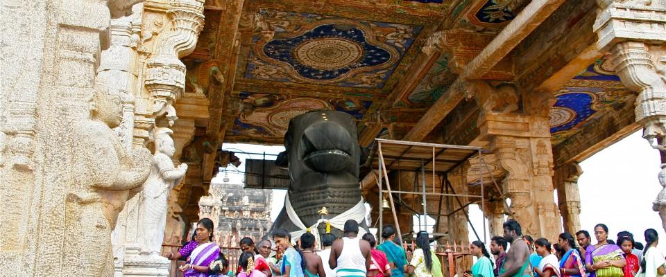 Thanjavur Brihadesvara Temple, Nandi