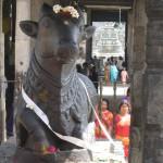 Tiruvannamalai, Annamalaiyar Temple