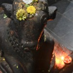 Tiruvannamalai, Annamalaiyar Temple,  Nandi offrandes