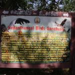 Vedanthankal Bird's Sanctuary_a