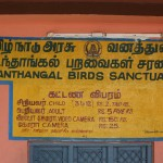 Vedanthankal Bird's Sanctuary_a1