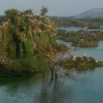 La réserve d'oiseaux (ornithologique) de Vedanthangal