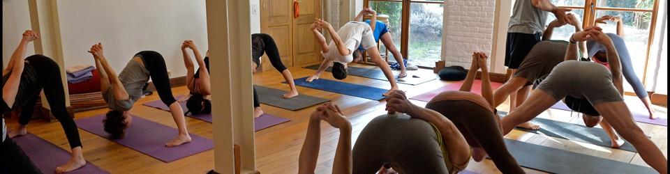 calque-La-salle-d-Ashtanga-Yoga