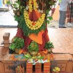 Rangoli, au pied d'un arbre sacré