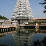 Tiruvannamalai, Annamalaiyar Temple, ritual Tank