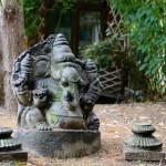 Jardin de l'Ashtanga Yoga Institute de Bruxelles