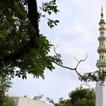 Le minaret de la mosquée de Mahâbalipuram