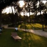 Sea Breeze Hotel garden